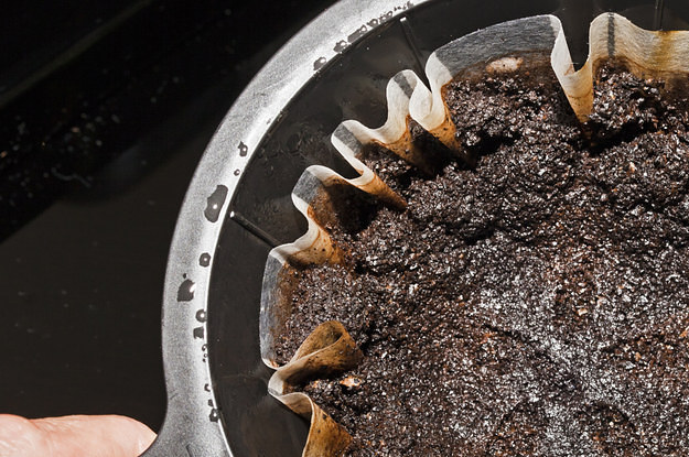 7 Unexpected Ways Coffee Grounds Can Make Your Life Better