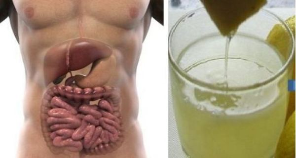How-to-Do-A-3-Day-Complete-Body-Detox-and-Flush-Excess-Water-and-Fat-Out-of-Your-System