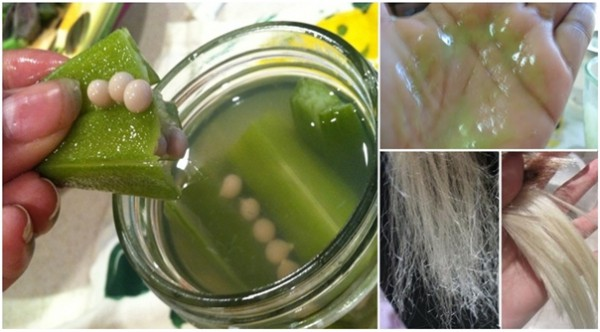 this-natural-okra-hair-conditioner-will-provide-health-and-shine-to-your-hair