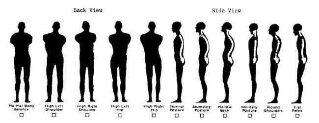 Posture and Height
